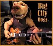 big city dogs